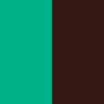 color-palette-love-what-you-do
