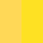 color-palette-sunshine-in-every-inch
