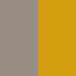 color-palette-the-mind-is-a-palace