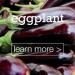 featured-image-designed-and-made-in-turkey-eggplant